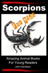 Scorpions For Kids Amazing Animal Books For Young Readers