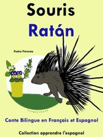 CONTE BILINGUE EN FRANçAIS ET ESPAGNOL: SOURIS - RATóN. COLLECTION APPRENDRE LESPAGNOL.