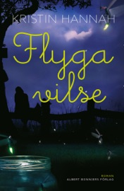 Flyga vilse PDF Download
