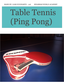 Table Tennis  (Ping Pong) book