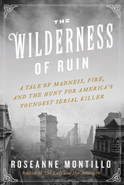 The Wilderness of Ruin book