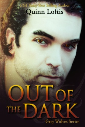 Out of the Dark, Book 4 The Grey Wolves Series image