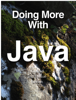 Lee Barney - Doing More With Java artwork