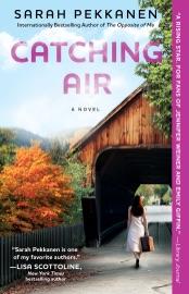 Catching Air PDF Download