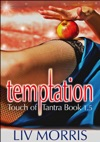 Temptation Touch Of Tantra Novella