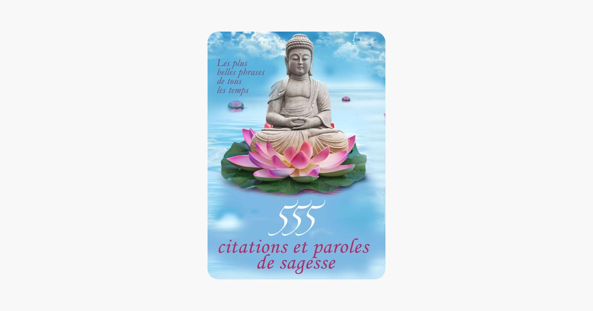 555 Citations Et Paroles De Sagesse Les Plus Belles Phrases De Tous Les Temps Edition Illustrée