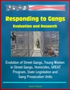 Responding To Gangs Evaluation And Research - Evolution Of Street Gangs Young Women In Street Gangs Homicides GREAT Program State Legislation And Gang Prosecution Units