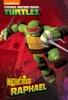 Mutant Origins: Raphael (Teenage Mutant Ninja Turtles)