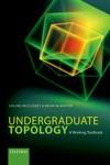 Undergraduate Topology A Working Textbook