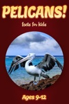 Pelican Facts For Kids 9-12