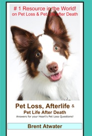 Pet Loss Afterlife Pet Life After Death Answers For All Your Heart S Pet Loss Questions