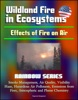 Wildland Fire In Ecosystems: Effects Of Fire On Air (Rainbow Series) - Smoke Management, Air Quality, Visibility, Haze, Hazardous Air Pollutants, Emissions From Fires, Atmospheric And Plume Chemistry