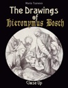 The Drawings Of Hieronymus Bosch