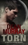 Torn A YA Urban Fantasy Novel Volume 2 Of The Reflections Books