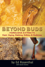 Beyond Buds book