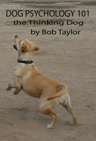 Dog Psychology 101: The Thinking Dog - Bob Taylor