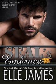 SEAL's Embrace PDF Download