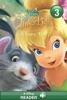 Disney Fairies: Tinker Bell:  A Fairy Tale
