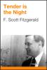 F. Scott Fitzgerald - Tender is the Night artwork