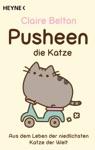Pusheen Die Katze