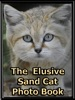 The Elusive Sand Cat