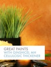 Great Paints With GINSHICEL MH Cellulosic Thickeners