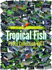 TROPICAL FISH PHOTO COLLECTION VOL.1