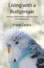 Living With A Budgerigar