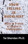 Snow Falling In Moonlight Odes In Praise Of Dogens Shobogenzo