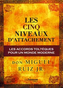 Les cinq niveaux d'attachement : Les accords toltèques pour un monde moderne La couverture du livre martien