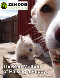 The Zen Method of Raising a Puppy