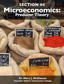 Microeconomics: Producer Theory