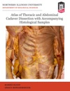 Atlas Of Thoracic And Abdominal Cadaver Dissection With Accompanying Histological Samples