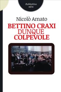 Bettino Craxi dunque colpevole Copertina del libro