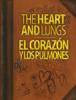 Educational Resources, University of Georgia - The Heart, Lungs, Corazon y Pulmones artwork