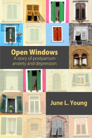 Open Windows: A Story of Postpartum Anxiety and Depression book