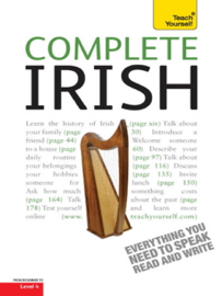 Complete Irish Beginner to Intermediate Book and Audio Course book