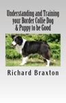 Understanding And Training Your Border Collie Dog  Puppy To Be Good