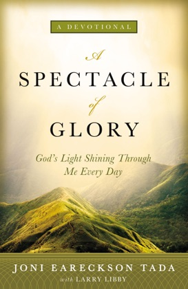 A Spectacle of Glory image