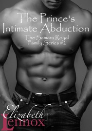 The Prince's Intimate Abduction PDF Download