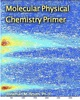 Molecular Physical Chemistry Primer