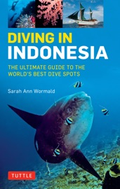 Diving in Indonesia - Sarah Ann Wormald