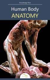 Download and Read Online Human Body Anatomy