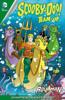Sholly Fisch & Dario Brizuela - Scooby-Doo Team-Up (2013-2019) #28  artwork