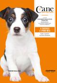 Il cane - Il cucciolo e i primi mesi