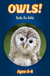 Facts About Owls For Kids 6-8