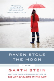 Download Raven Stole the Moon