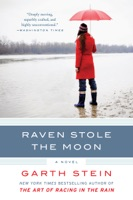 Raven Stole the Moon ebook Download