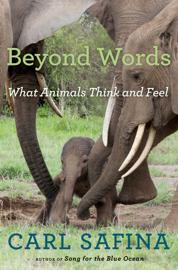 Beyond Words book