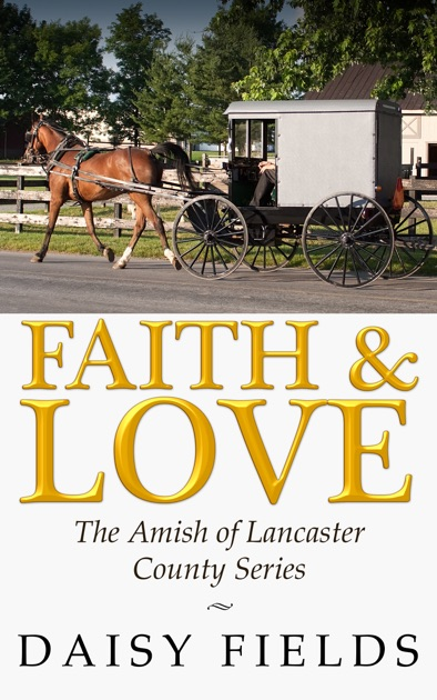 A Touch of Faith (The Amish of Elkhart County #2)